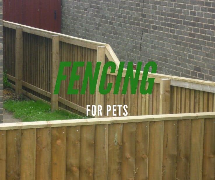fences-pets