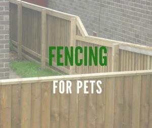 pets-fencing