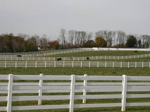 Horse-Arena -gates-fence