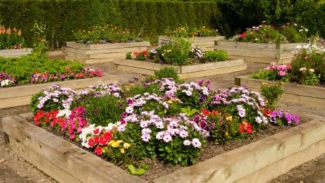 raised_flower_beds