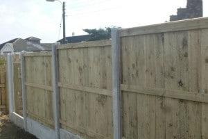 fencing-brandon-2